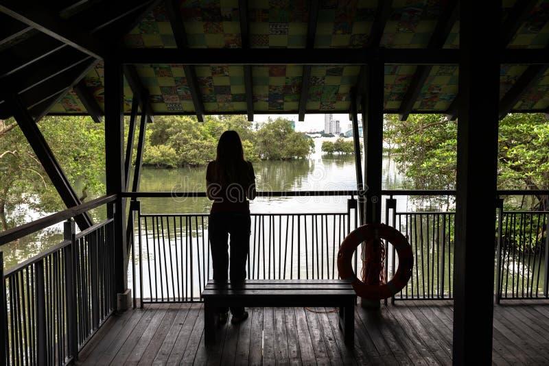 SINGAPOUR - décembre 2018 : Femme observant la belle nature de l'intérieur du pavillon de promenade de palétuvier, Sungei Buloh photographie stock libre de droits