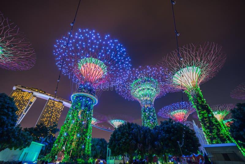 Singapour - 19 novembre 2017 : Exposition de verger de Supertree, Singapour S images libres de droits