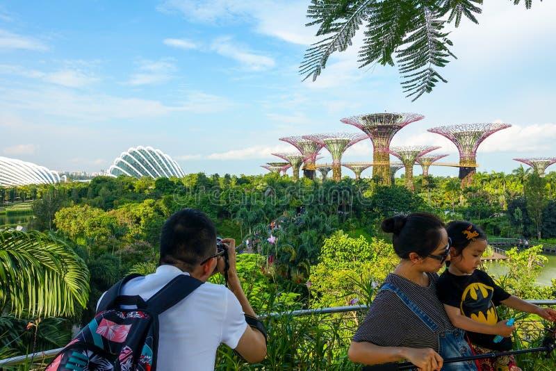 Singapour, Singapour - 17 juin 2014 : Touristes prenant des photos des supertrees dans les jardins par la baie photo stock
