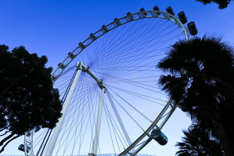 Singapur-Augen lizenzfreie stockfotos