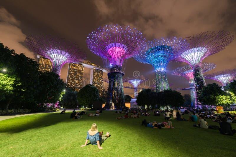 Singapur, Azja, 25 2018 FEB; Turystyczny czekać na lekki przedstawienie przy ogródami Podpalanym natura parkiem w regionie centra obraz royalty free