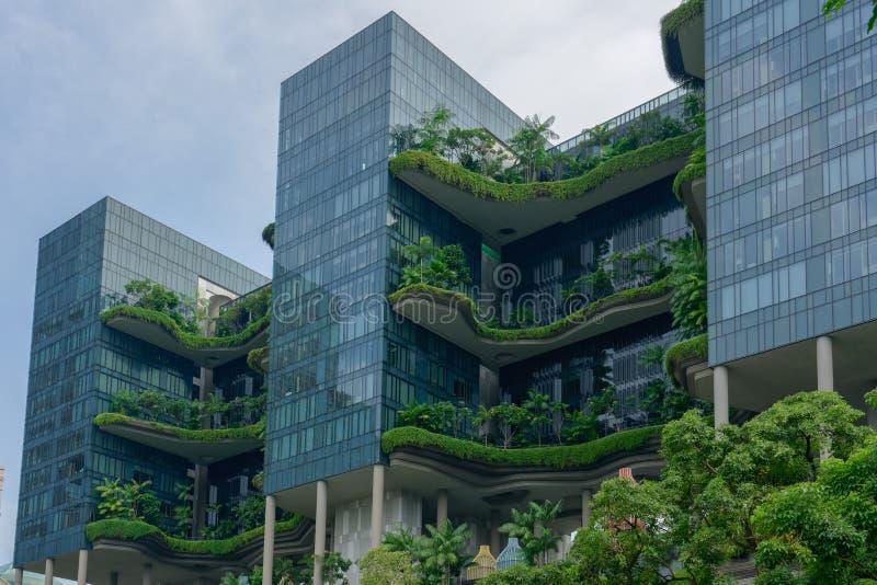 Singapur - de junio el 310 de 2018: Hotel real del parque en Singapur, calle imagenes de archivo