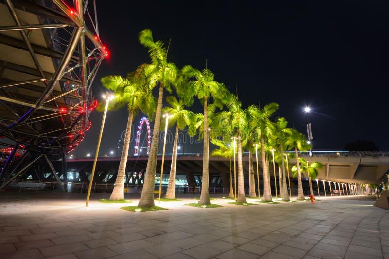 Singapur Flayer la noria gigante foto de archivo libre de regalías