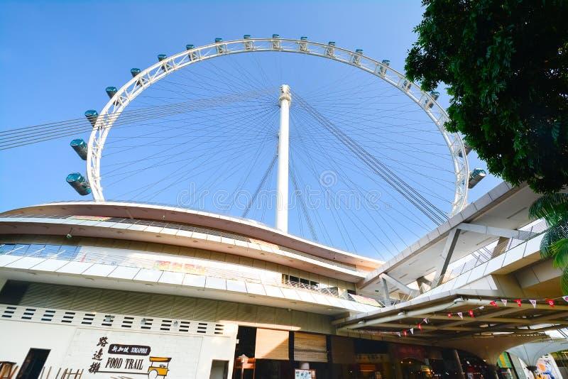 Singapur Flayer la noria gigante foto de archivo