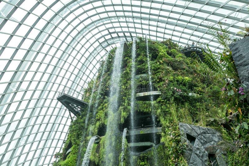 SINGAPUR - 19. JANUAR 2016: Ansicht von verschiedenen Grünpflanzen und von Wasserfall vereinbart lizenzfreies stockbild