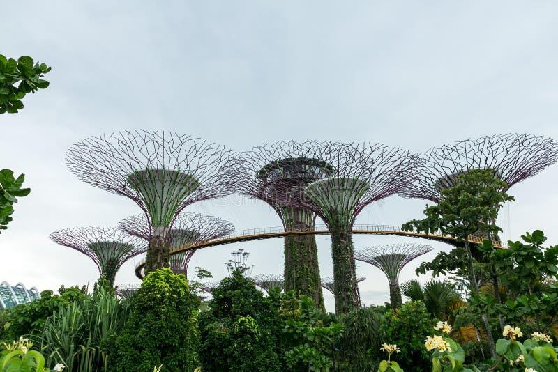 SINGAPUR - 19. JANUAR 2016: szenische Ansicht des Monuments und der Bäume stockfotografie
