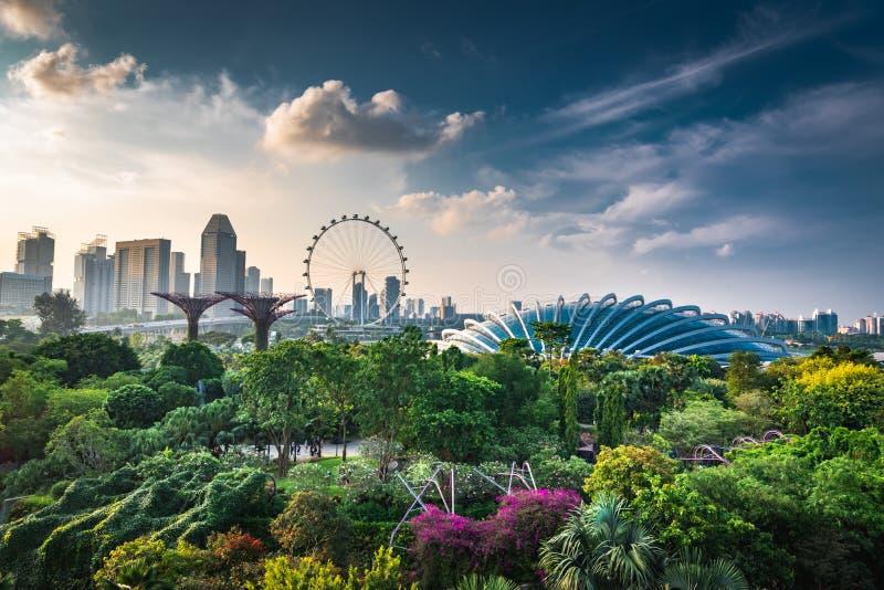 Singapur linia horyzontu wieczór obraz royalty free