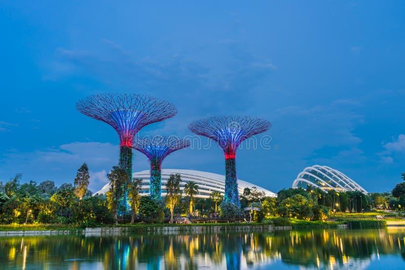 Singapur, Listopad - 19, 2017: Zmierzchu czas przy ogródami zatoką zdjęcia royalty free