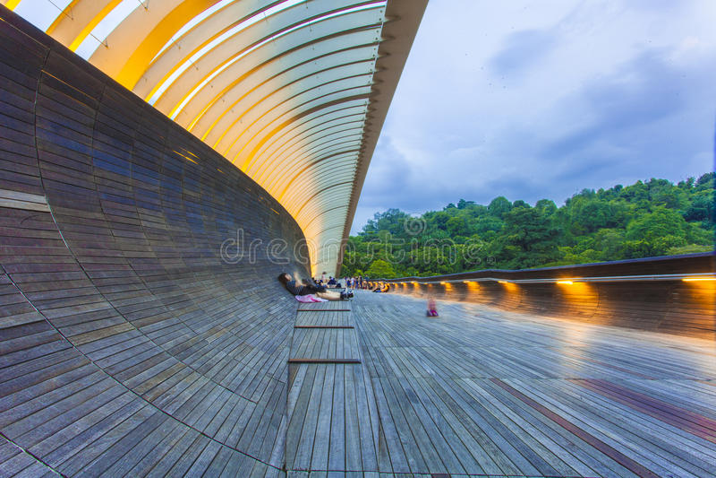 SINGAPUR, MAJ - 21,2016: Singapur Henderson fala most przy Moun zdjęcie stock