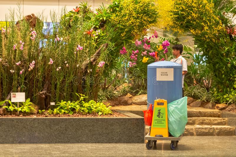 Singapur Marzec 2019 Ogrodniczka bierze opiekę ogród przy lotniskiem Kształtować teren pracy zdjęcia stock