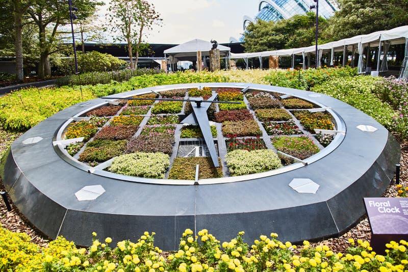 SINGAPUR - Marzec 19, 2019: Pracujący zegar robić kwiatów łóżka w ogródach zatoką zdjęcie stock