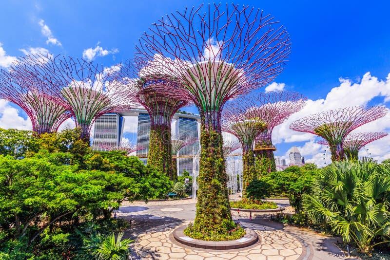 Singapur miasto, Singapur obrazy royalty free