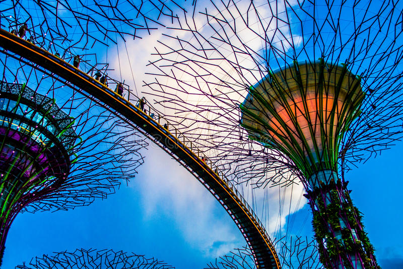 Singapur-Monsterbäume in den Gärten durch die Bucht parken, Singapur lizenzfreies stockbild