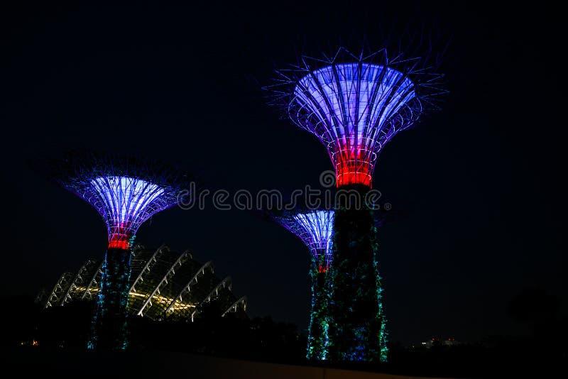Singapur ogród Buddha, Chinatown Supertrees w ogródach zatoką, obubrzeżną w marina zatoki terenie w Singapur, ja jest nowym proje fotografia royalty free