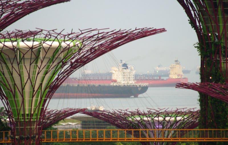 Singapur oleju statku tankowowie fotografia royalty free