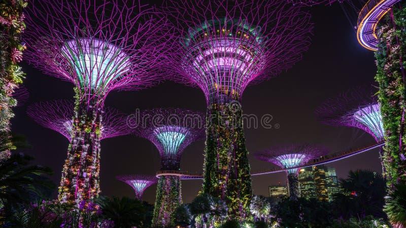 Singapur, Październik - 16, 2018: supertrees ogródy zatoką przy nocą obrazy royalty free