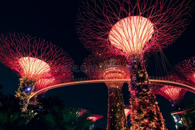 SINGAPUR - 15. SEPTEMBER 2017: Supertree Grove an den Gärten durch die Bucht, Singapur lizenzfreie stockfotografie