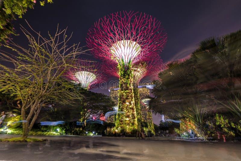 Singapur, Wrzesień 29: Ogródy zatoką Noc widok lekki drzewny przedstawienie w Singapur zdjęcia stock