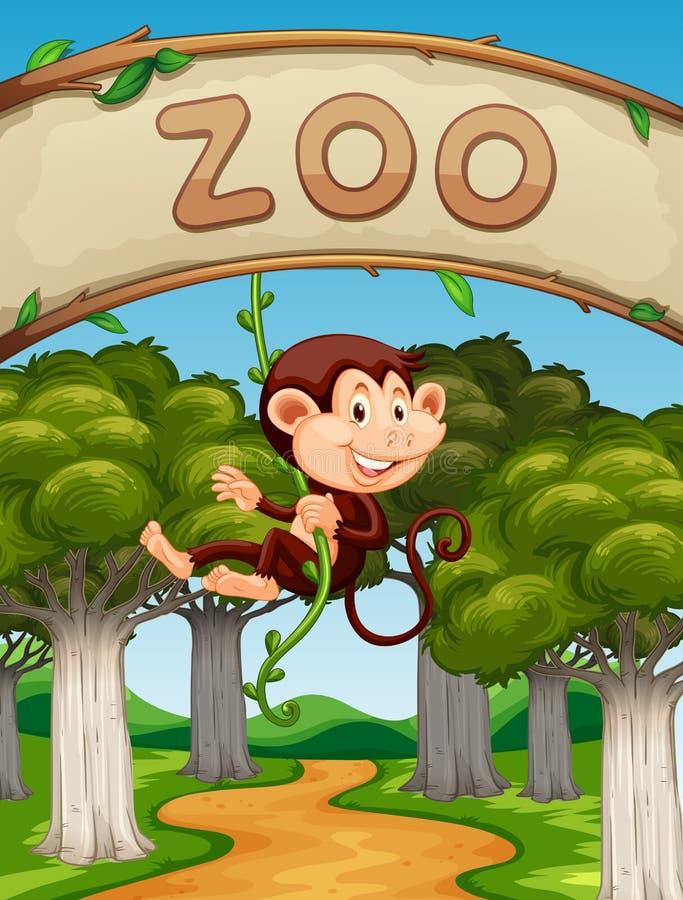 Singe accrochant sur la vigne dans le zoo illustration libre de droits