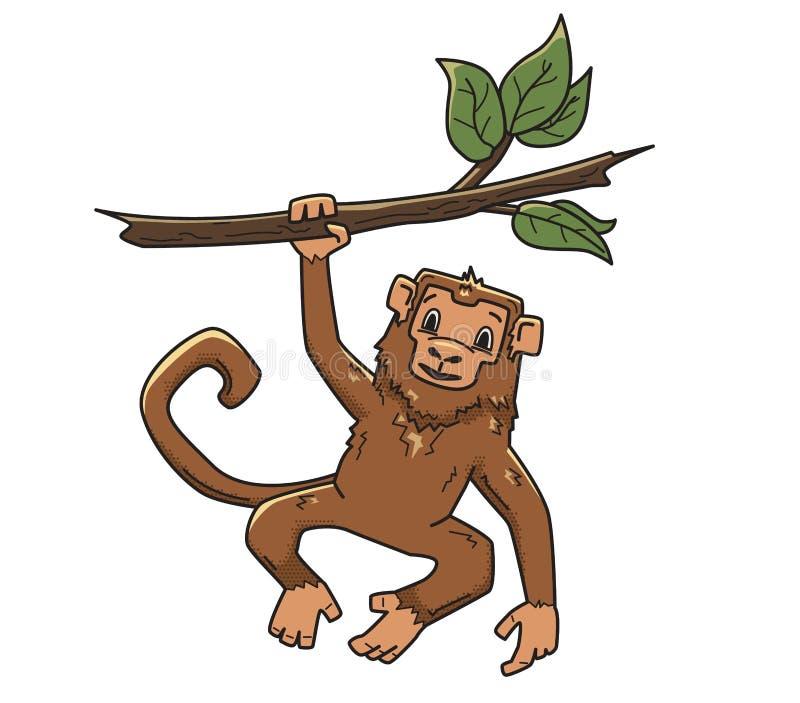 Singe accrochant sur une branche d'arbre Caractère animal, illustration de vecteur, d'isolement sur le blanc illustration de vecteur