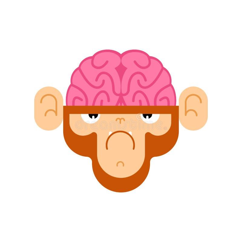 Singe avec le cerveau Gorille avec des cerveaux Illustration de vecteur illustration libre de droits