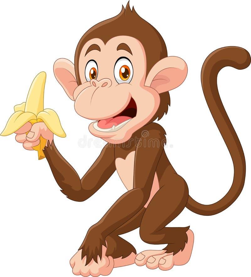 Singe drôle de bande dessinée jugeant la banane d'isolement sur le fond blanc illustration stock