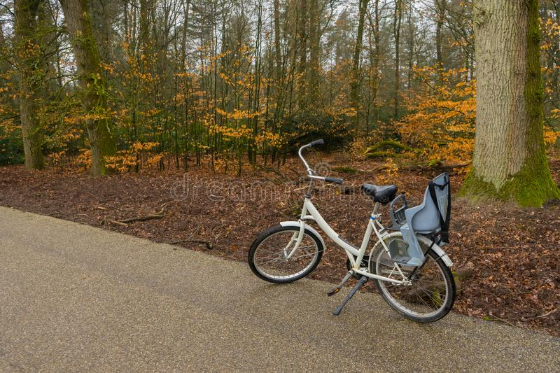 Singe white blue bike standing side view outside in the woods. Autum winter trees background. Singe white blue bike standing side view outside in the woods royalty free stock photography
