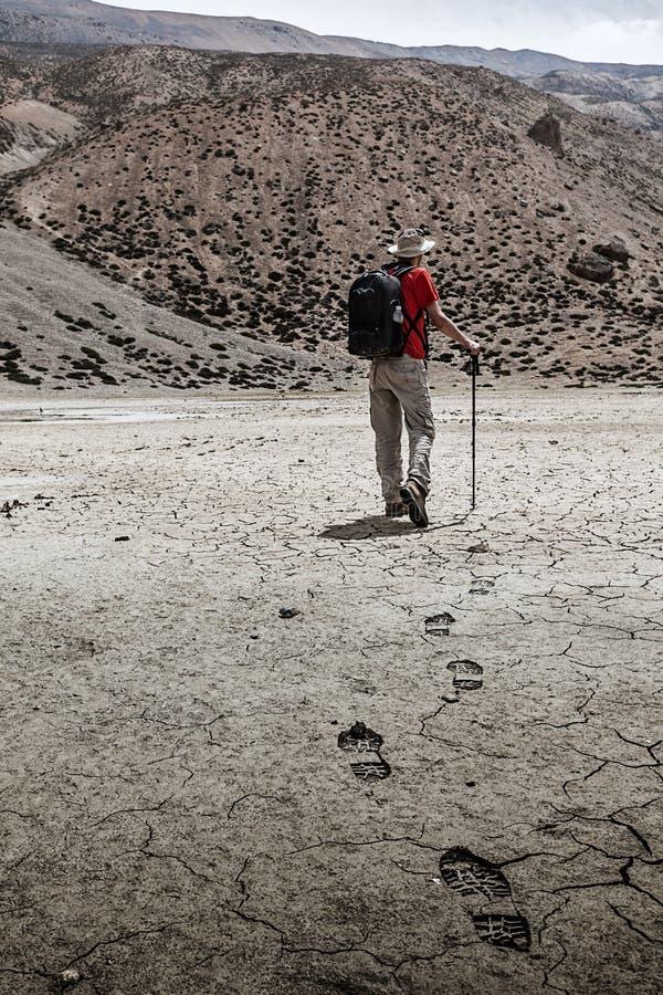 Bergsbestigaretrekker som går i Himalayas arkivfoton