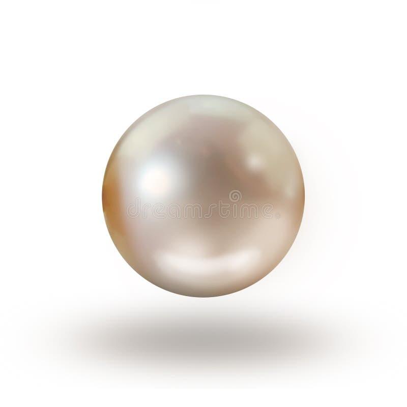 Singelkrämpärla som isoleras på vit med droppskugga fotografering för bildbyråer