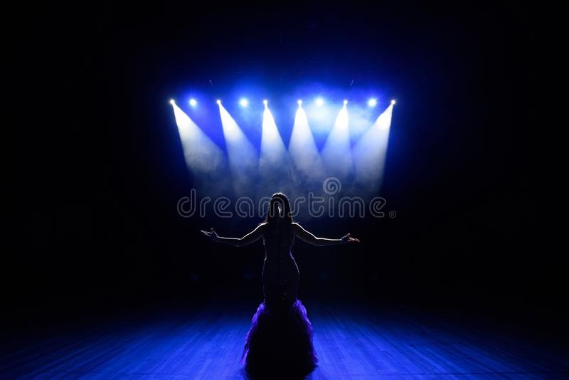 Singer performing on stage with lights. Concert. View from the auditorium royalty free stock photography