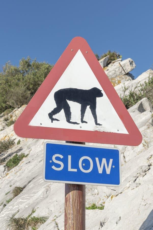 Singes de panneau d'avertissement au Gibraltar photo stock