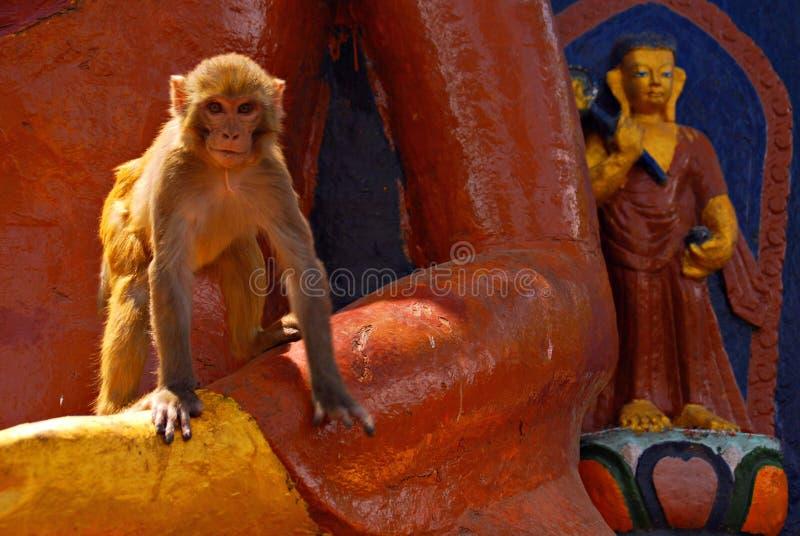 Singes et les statues bouddhistes images stock