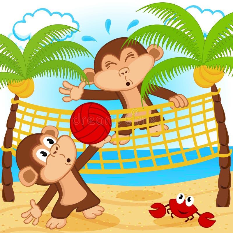 Singes jouant dans le volleyball de plage image libre de droits