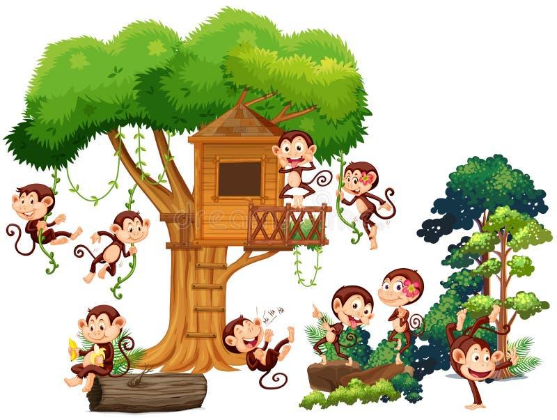 Singes jouant et montant la cabane dans un arbre illustration stock