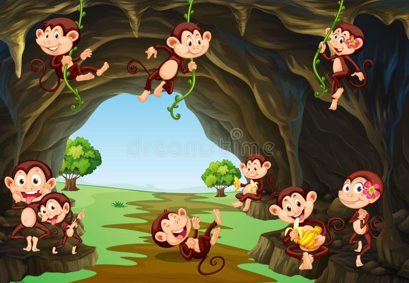 Singes vivant dans la caverne illustration libre de droits