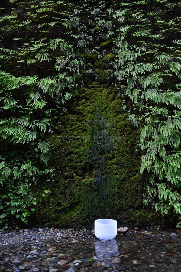 Download Singing Bowl stock photo. Image of vibration, tibetan - 36629416