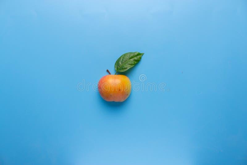 Single äpplet med kopieringsavstånd royaltyfria foton