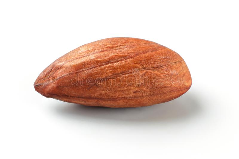 Single almond nut isolated on white background. royalty free stock photography