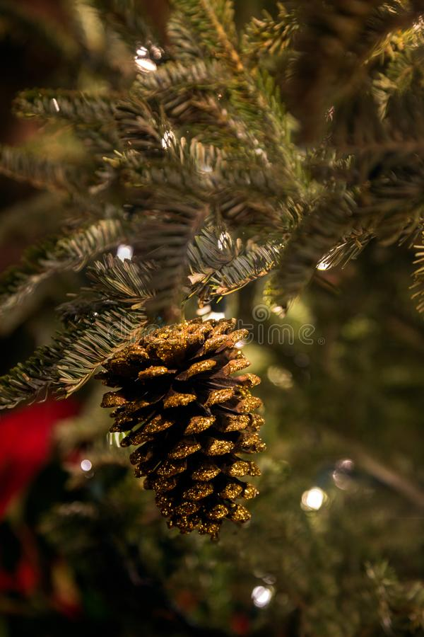 A Sparkling Gold Pinecone royalty free stock image