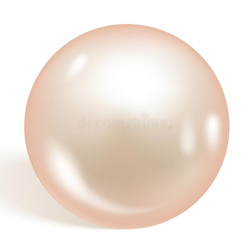 Single beautiful shiny natural pearl isolated on white background. Soft apricot pearl. Vector illustration vector illustration