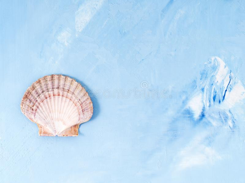 Single big seashell on blue stone background, scallop shell, copy space. Minimalistic summer concept of holiday by sea. Single big seashell on blue stone royalty free stock photos