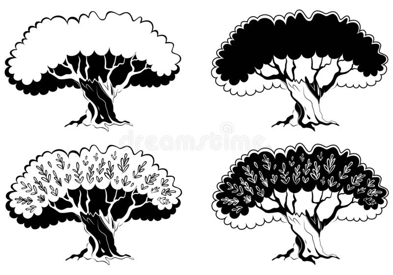 Single black olive tree with branches isolated on white background. Tree icon silhouette vector Illustration. Concept olive oil label or logotype for farmer stock illustration