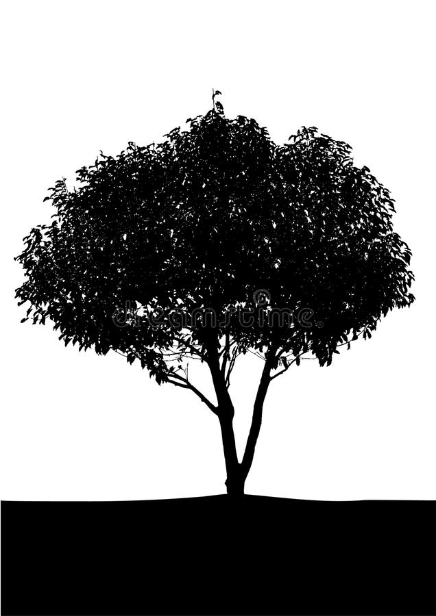 Single black tree. With a white background stock illustration