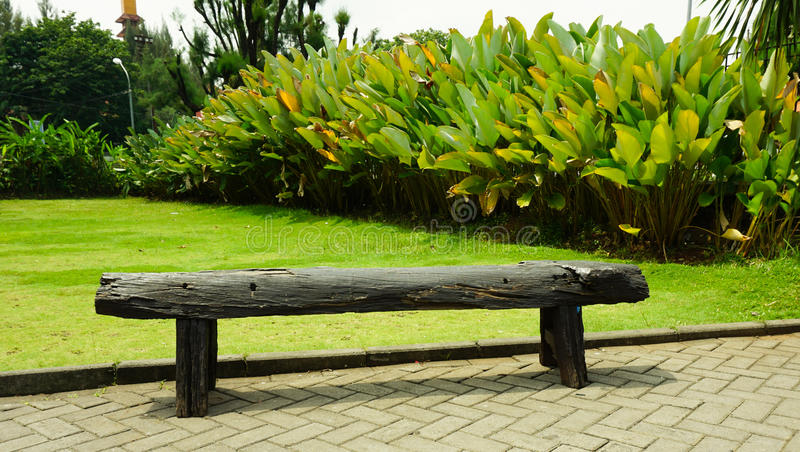 A Single Black Wood Bench In A Garden Photo Taken In Semarang ...