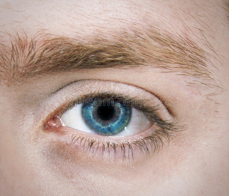 Download Single Blue Eye stock photo. Image of person, eyes, forward - 18822228