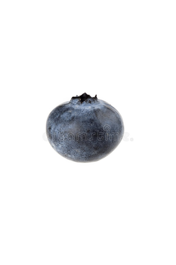 Download Single Blueberry stock image. Image of moisture, background - 6438887