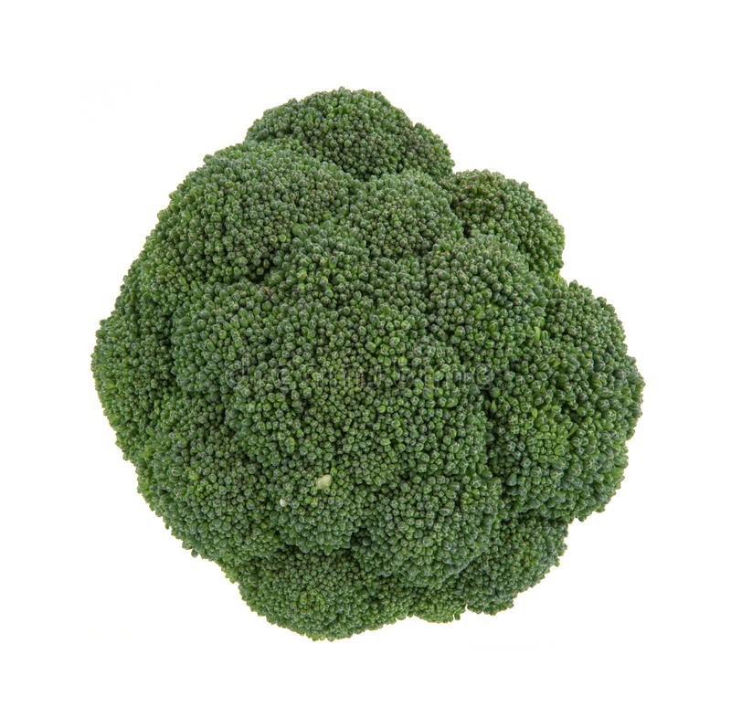 Single broccoli head. An overhead view of a single stalk of broccoli head royalty free stock images