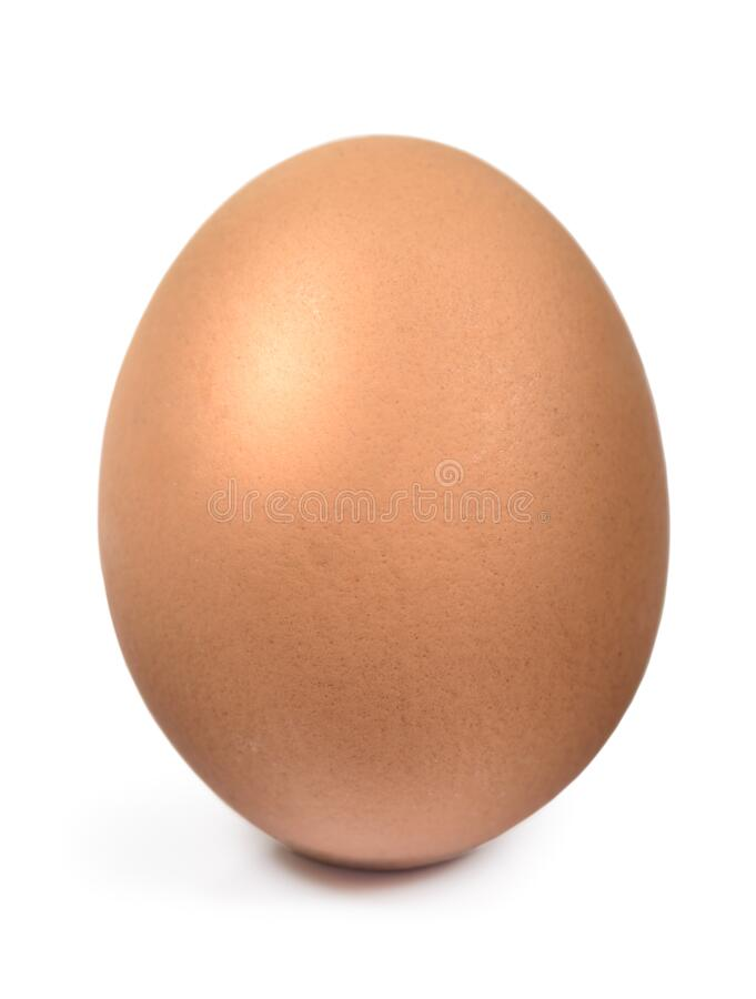 Single brown chicken egg isolated with clipping path royalty free stock image
