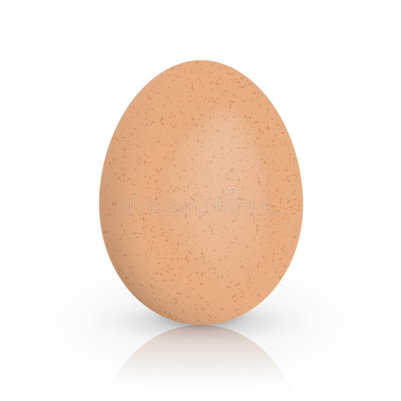 Single brown chicken egg isolated on white background. Vector illustration. stock illustration