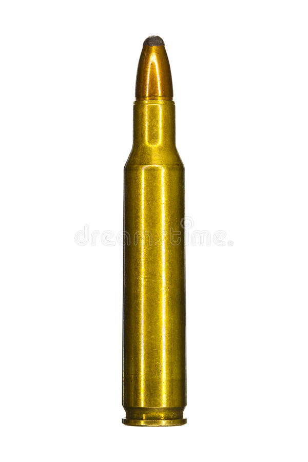 Download Single bullet stock photo. Image of campaign, hunt, game - 26217884